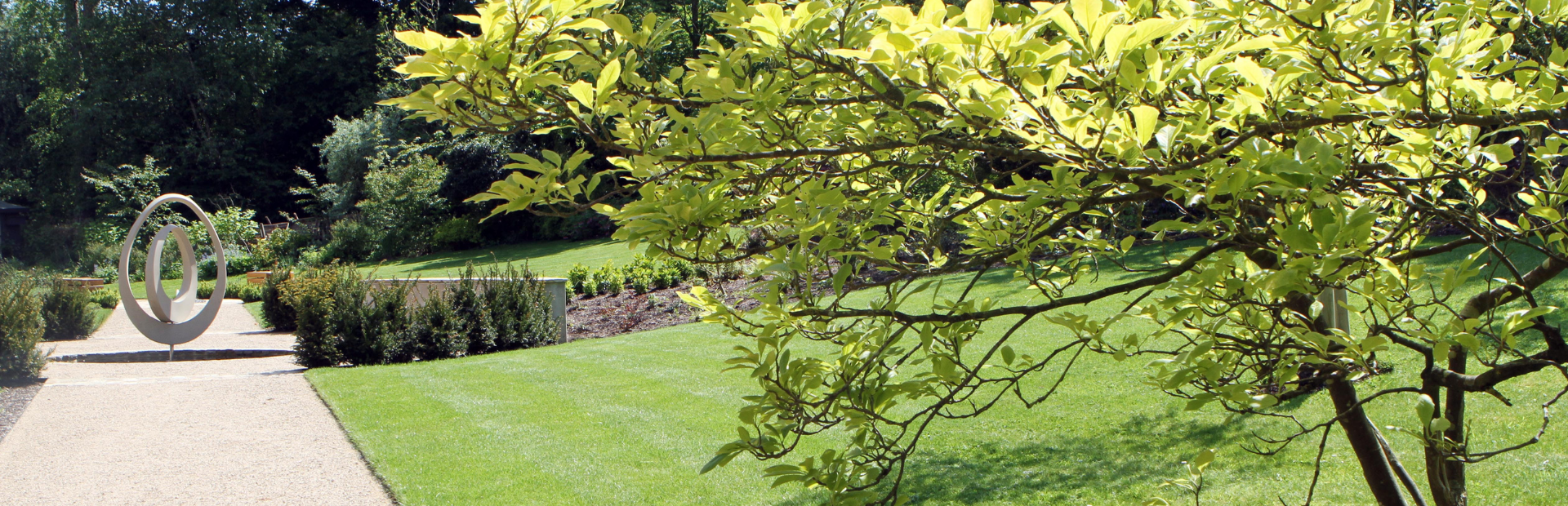 Longfield Hospice's garden with a focal tree